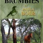 The Brumbies series, Paula Boer
